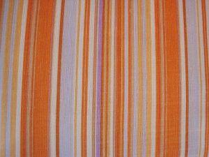 Chrpa - oranžovofialový proužek