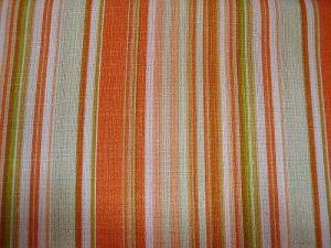 Chrpa - oranžovozelený proužek
