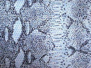 Karmen - modročernobílá tygrová látka